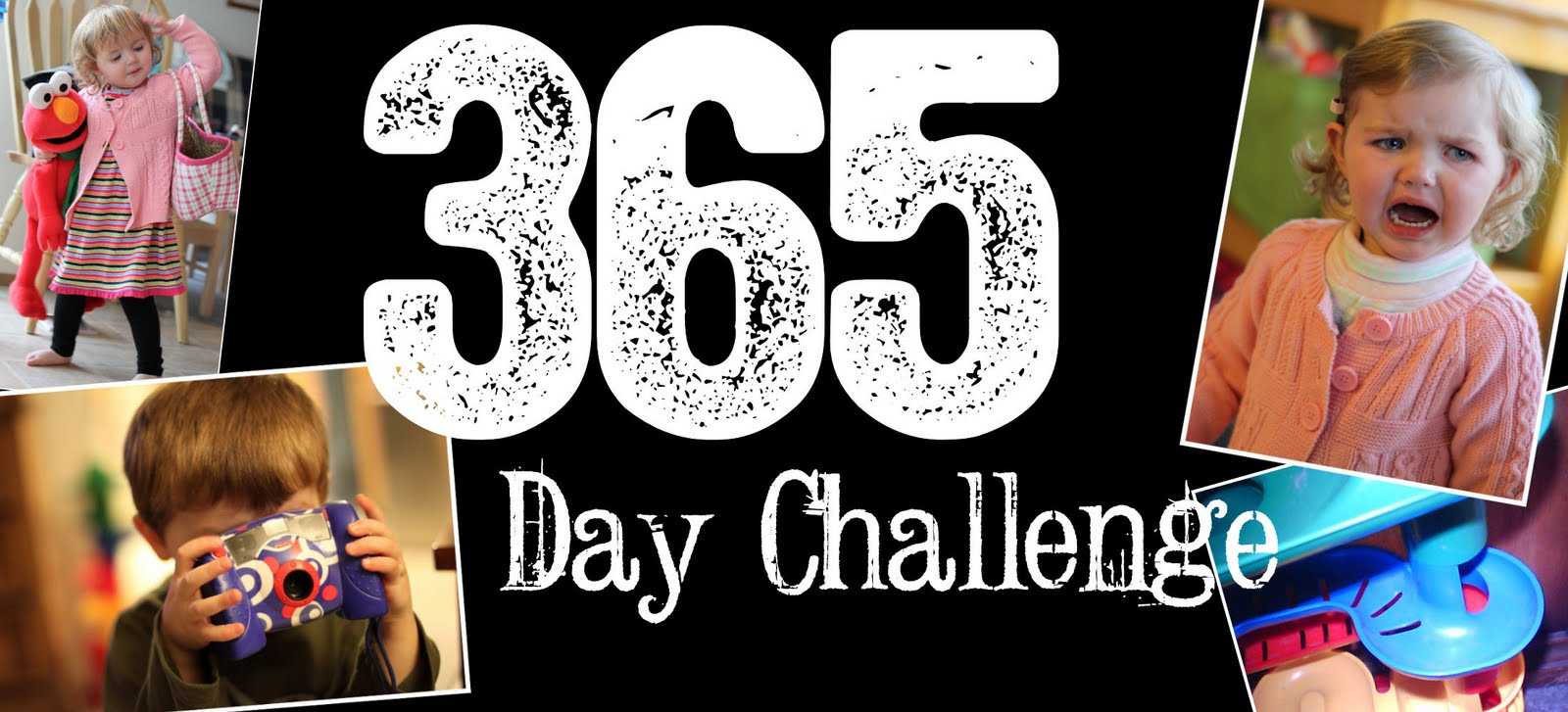 The 365 Day Project