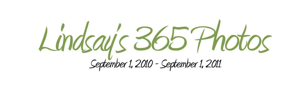 Lindsay's 365 Days