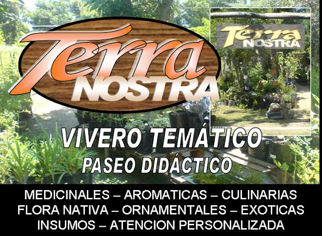 Terra Nostra