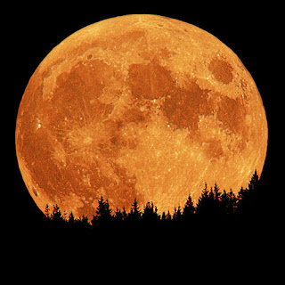 Lua cheia que me olhas solitária, ao fundo do horizonte