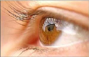 Teus lindos olhos castanhos que choram sem eu saber porquê.