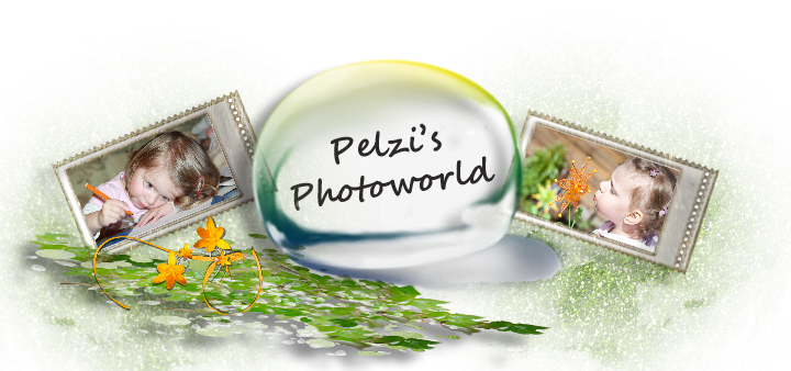 pelzi' s Photoworld