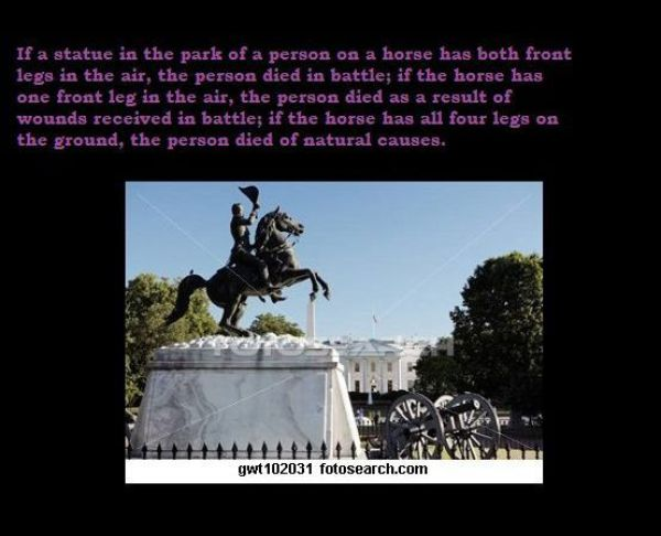 ~~Cause of death~~ Some_curious_facts_640_01