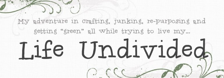 Life Undivided