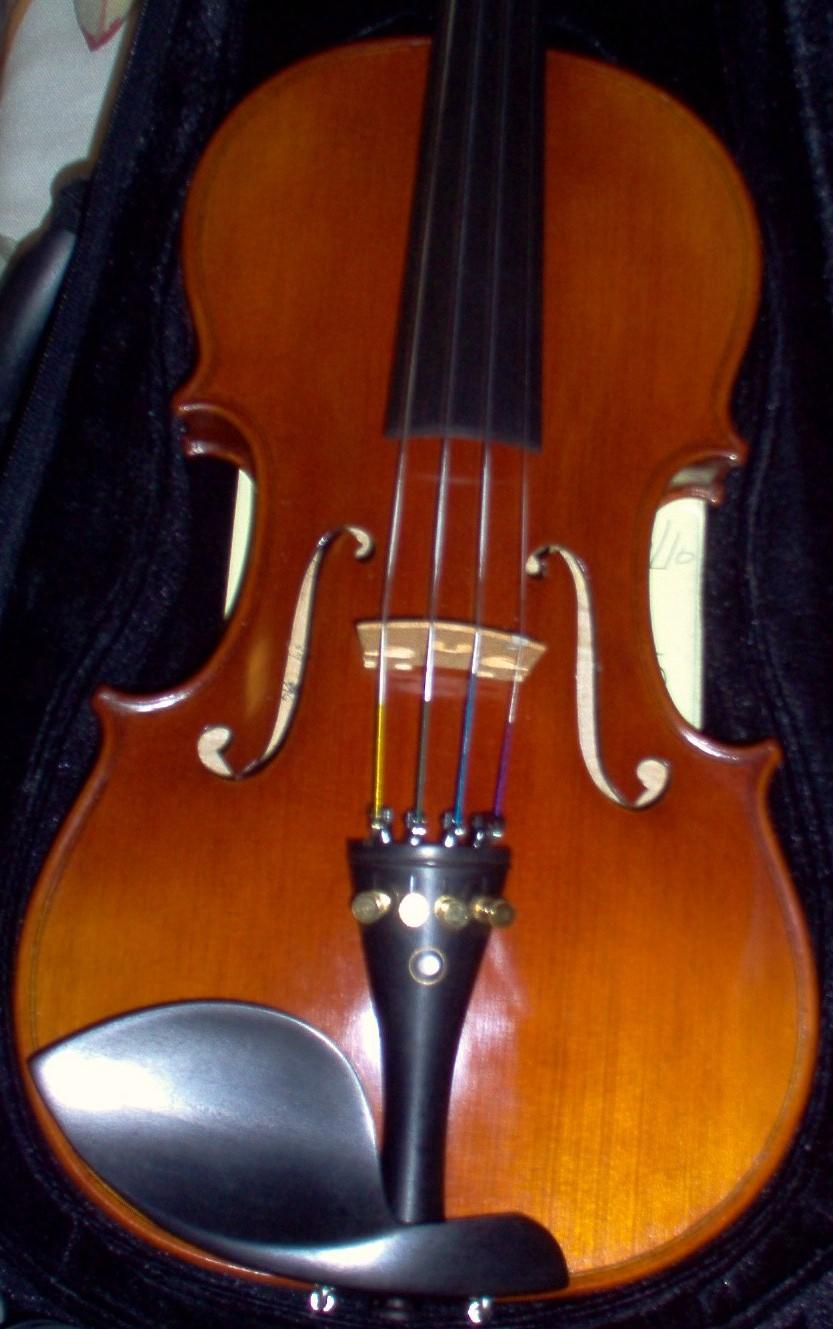 Old wood minerale interior of violin - Dominant Violin String Colors