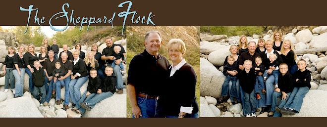 Sheppard's Flock