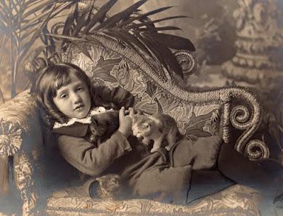 Victorian  Edwardian Fashion on Eastlake Victorian  Victorian   Edwardian Cat Photography