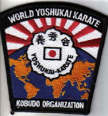 WYKKO Organization Patch