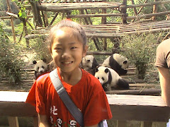 Chengdu Panda Research Center Photos