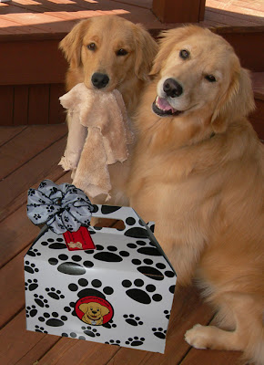 lovely dog gift idea