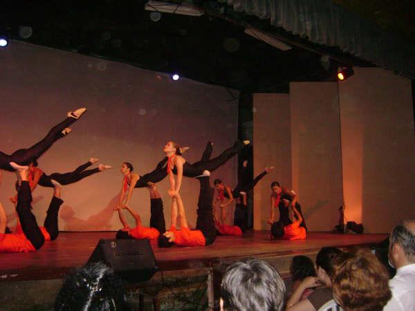 FUNCION  2007