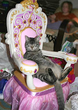 (click on my throne below to view) ALL my treasuries!!
