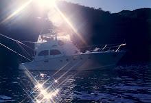 'Sea Venture'