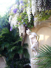 Cascade Palms and Wisteria