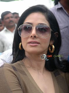 Old Mallu actress Sri Devi latest Photos3
