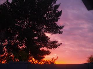 thefivefish.com, sunset, Karie Herring
