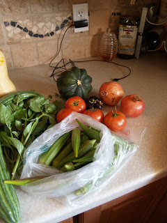 CSA, agriculture, organic, community supported agricutlure, produce, free range eggs