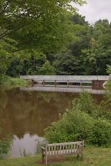 Pond at Mt. Holyoke College