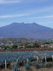 VOLCAN TEQUILA