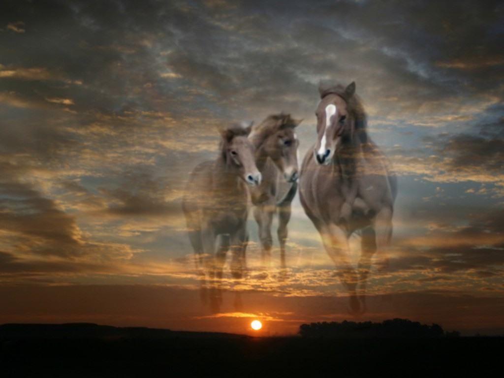 http://4.bp.blogspot.com/_xGMqNx8Dyi8/S8okeMurWwI/AAAAAAAADSU/SAc3ht2zh18/s1600/GALLOPING+HORSES.jpg