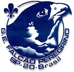 Falcão Peregrino Scout Group