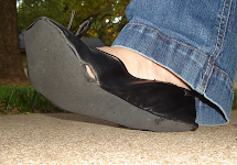 Dr. Scholl's Fast Flats