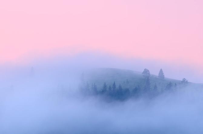 http://4.bp.blogspot.com/_xMg1jxBAoZQ/TT-xitwHCpI/AAAAAAAAEmM/1qP60g8fhOU/s1600/fog_photography_%252811%2529.jpg