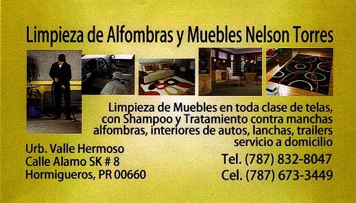 Limpieza de alfombras y muebles for Limpieza de muebles