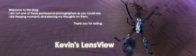 Kevin's LensView