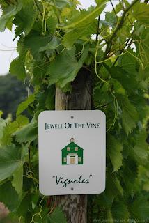 Vignoles (c)2008 SmellsLikeGrape