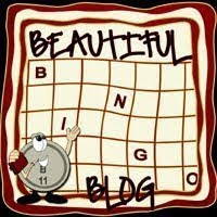 Beautiful BINGO Blog Award