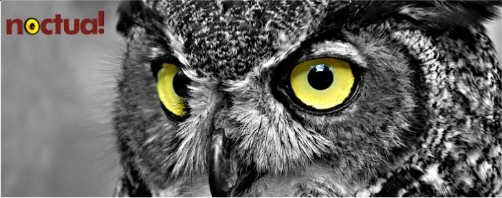 noctua: visualize!