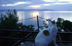 A magia das ilhas gregas