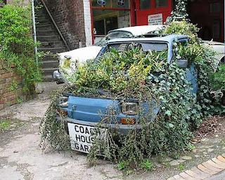 Fiat Garden Art Car