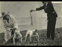 Two sturdy contestants from the 1919 Dog Show