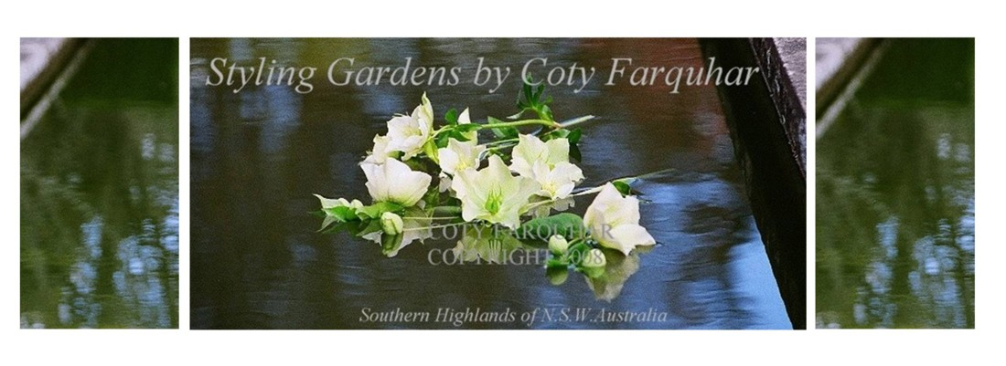 Styling Gardens by Coty Farquhar