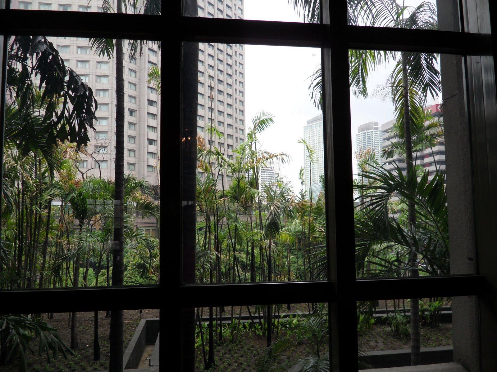image Pillados desde la ventana de casa