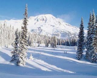 Tundra iklimi