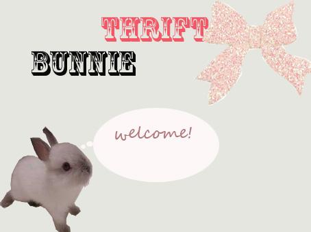 Thrifty Bunnie