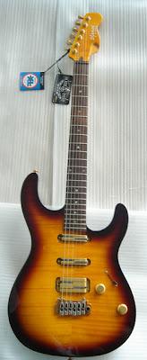 Shaman JPM Standard VGS Guitar