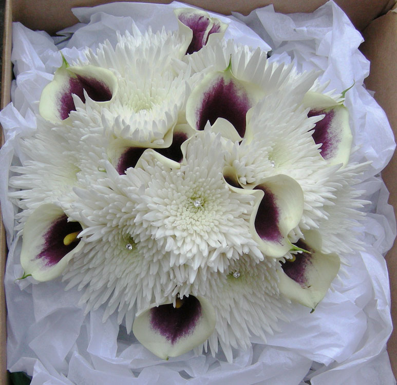 Catherine 39s winter wedding bouquet of ivory and purple calla lilies mixed