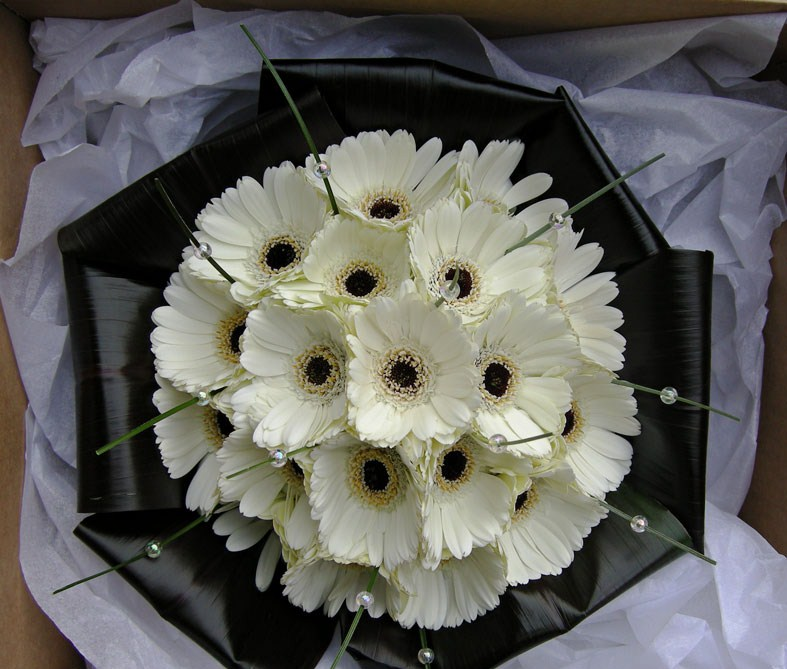 Natalie 39s wedding bouquet of ivory gerberas folded black tie leaves and