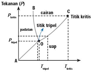[tripel.PNG]