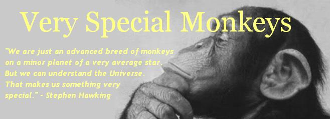 Very Special Monkeys