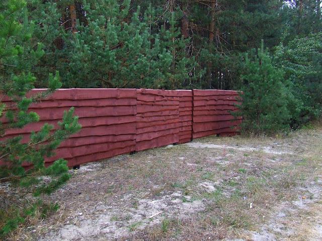 Забор и сосны, калитка от дороги