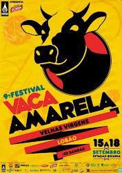 stereovitrola em mais uma de suas tocadas. 9-Festival Vaca Amarela2010
