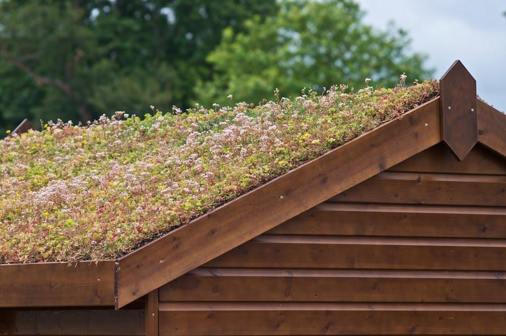 Photographer's Garden: Green Roofs - A Guide
