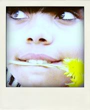 Flower ♣