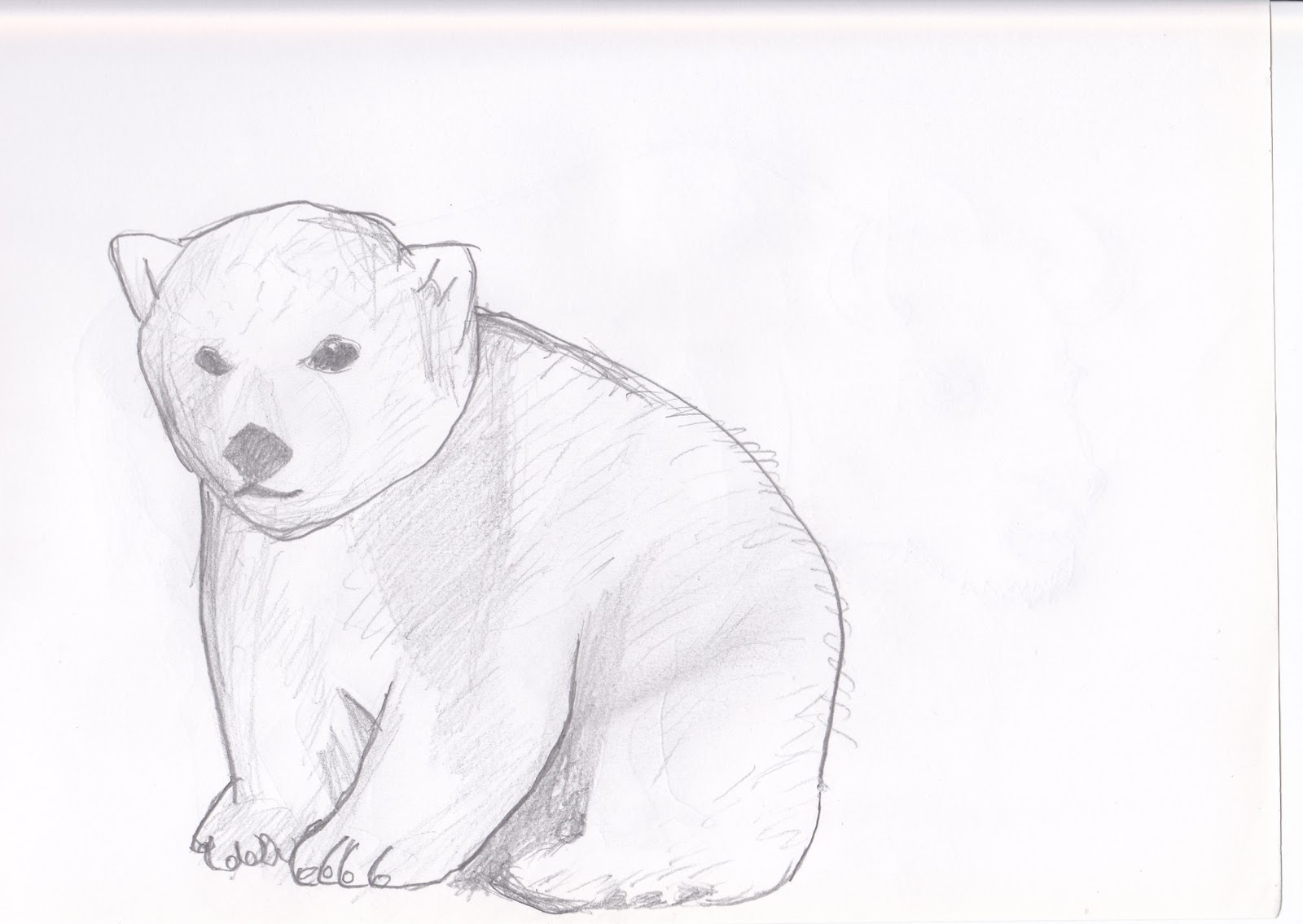 THE O.S. BLOG: Paper Zoo - Animal Sketches - WIP