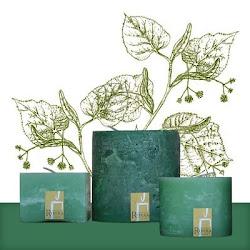 Verde Agua - Tilo